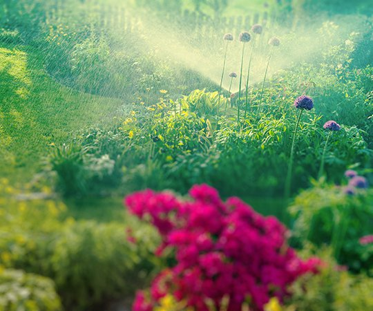 Bewässungerungsanlage Garten